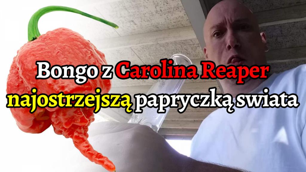 YouTuber wali bongo z najostrzejszą papryczką chilli na świecie