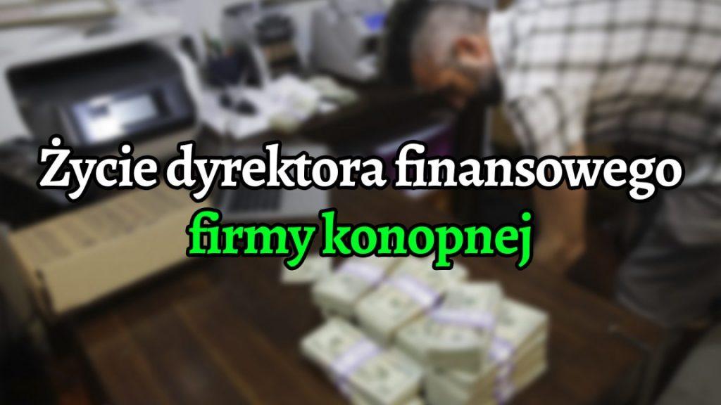 Torby gotówki, uzbrojeni strażnicy, ostrożne banki: życie dyrektora finansowego firmy konopnej